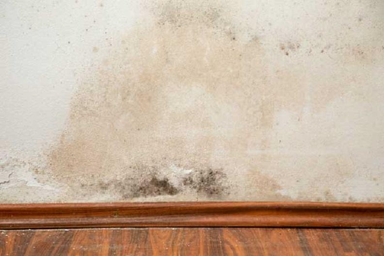 Usuwanie wilgoci z domu, mieszkania, metody usuwania wilgoci
